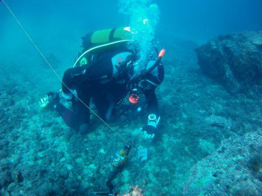 Recuperación ambiental de la biodiversidad marina mediante la plantación de plántulas Posidonia oceanica